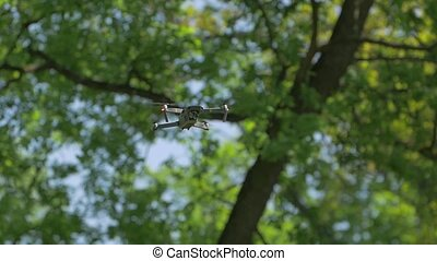 Drone trees background forest green leaves flies shoots video quadrocopter aerial photography equipment backstage making off