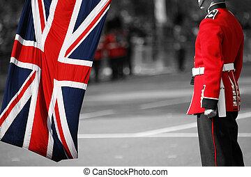 dronning, soldat, hos, trooping, den, farve, 2012