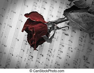 droog, blad, roos, muziek, open, rood