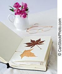 droog, bladeren, boek