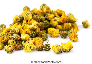 droog, chamomile, bloem, vrijstaand, op wit, achtergrond