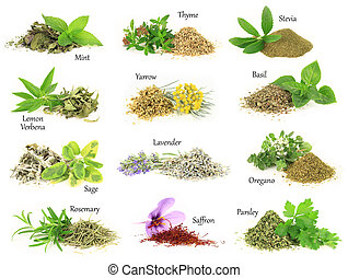 droog, keukenkruiden, verzameling, aromatisch, fris