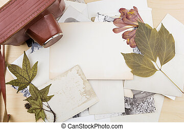 droog, oud, houten, stapel, foto's, fototoestel, planten, surface.