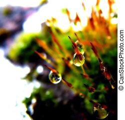 Drop background 2