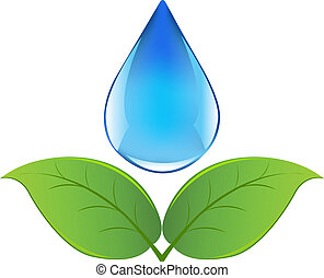 Drop Of Water With Sprout, Isolated On White Background,...