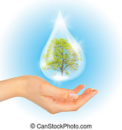 Drop of water with Tree inside and hand.