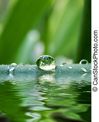 droplet - Dew drop on a blade of grass...
