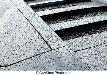 Droplets on black sport car