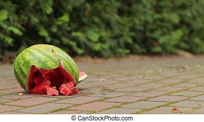 Dropped watermelon crashing to the ground - Smashing ...