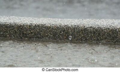 Drops of heavy rain fall on asphalt. Tropical Rainfall -...