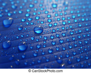 Drops - Many drops on the blue plastic carton.