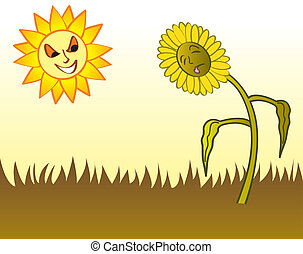 A hot sun drying out the grass and a flower in the yard during a drought.