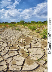 Drought in countryside in summer with cracks in the ground