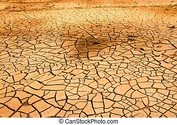 drought soil in dry river ,hot summer