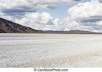 Drought stricken dry lake bed in California's Mojave Desert National Preserve.