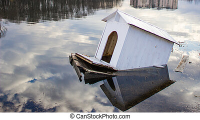 Drowning house of swans and ducks on the lake