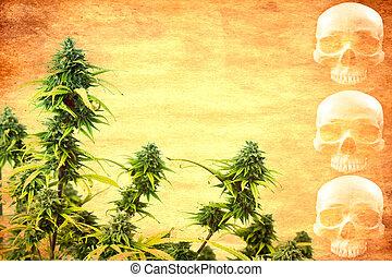 Drug addiction concept. Abstract textured marijuana plant ...