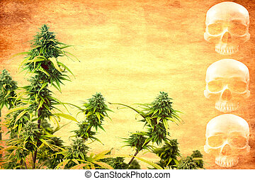 Drug addiction concept.Abstract textured marijuana plant...