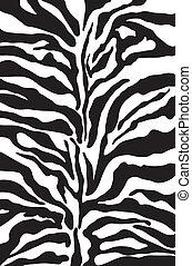 druk, próbka, zebra, tło