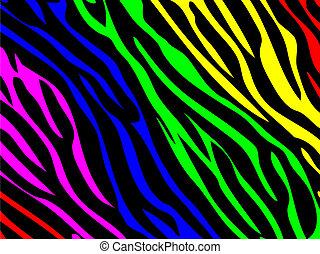 druk, tęcza, zebra