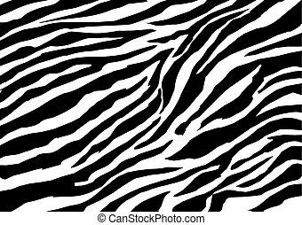 druk, zebra