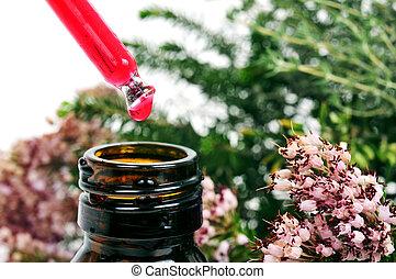 druppelteller, met, bloem, essentie, en, een, plant, van, rozemarijn