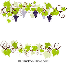 druva, trädgård, vinstockar, frame.