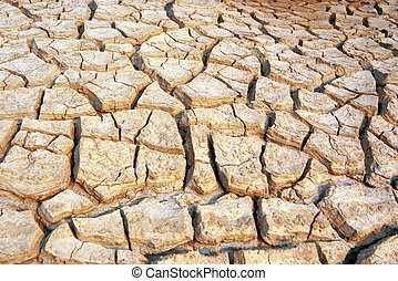 Dry and barren land - cracked and dry land due to drought
