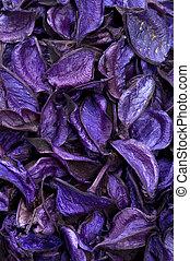 dry aromatic plants background