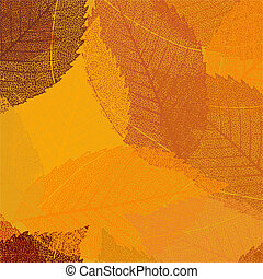 Dry autumn leaves template. EPS 8