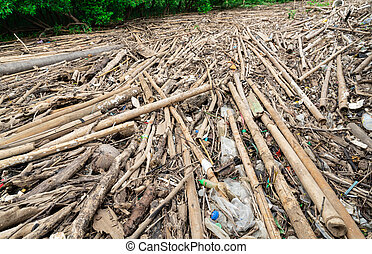 Dry bamboo and plastic bag on mangrove forest. Waste in the sea problem. Cause of global warming and greenhouse effect. Household waste problem to environment. Environmental issues from plastic waste.