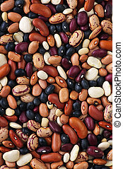 Dry beans - Assorted mix of various loose dry beans
