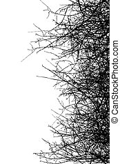 Dry bush silhouettes over white background