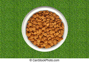 Dry cat food in plate over green grass