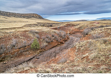 dry creek at Colorado foothills in springtime