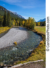 Dry creek in Banff National Park.