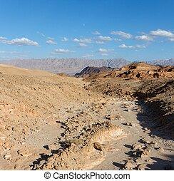 Dry creek in rocky desert