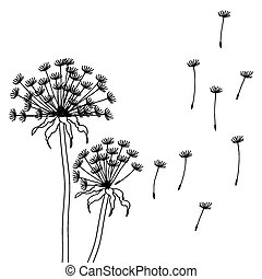 Dry dandelion flowers - abstract vector illustration