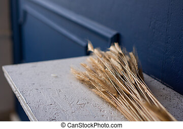 Dry ears of corn on a table. Scandinavian room with blue interior design.