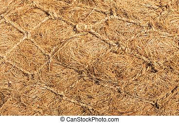 Dry Flax Fiber