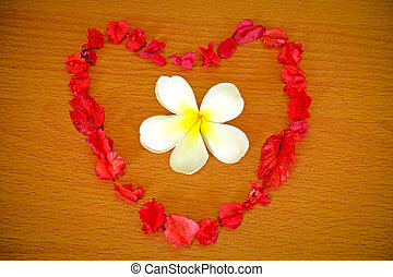 Dry flower heart with frangipani on wood background