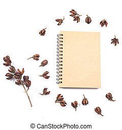 dry flower seed of tropical tree on white background isolate.