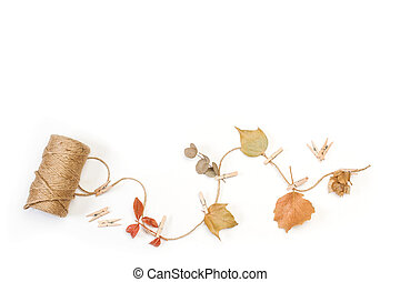 Dry flowers and leaves on a thread on a white background