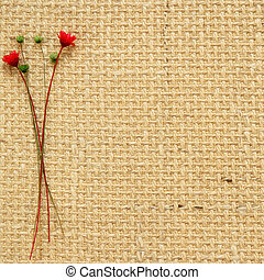 Dry flowers on a beige background