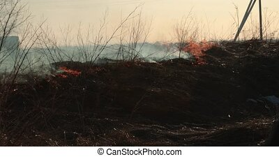 dry grass burns in the daytime