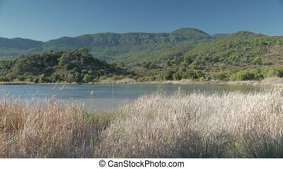 Dried sedge grass by the Suluklu Lake with green hills and ruins of walls of ancient Kaunos on the background, Dalyan, Turkey.