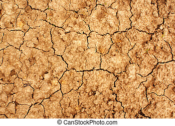 Dry ground - Cracked dry ground