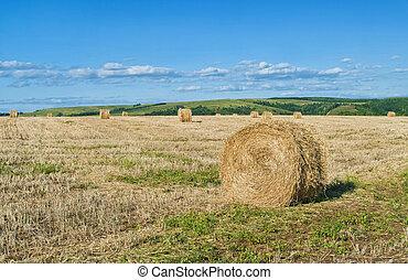 dry hay rolls