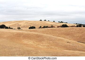 dry hills background
