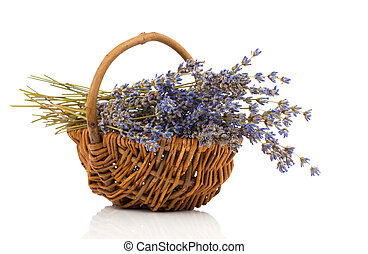 dry lavender flower in a basket, isolated on white background